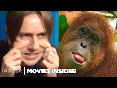 How Sounds Are Faked For Nature Documentaries   Movies Insider