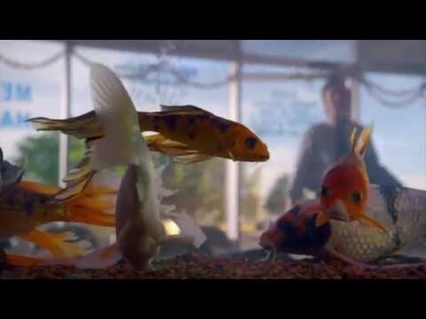 Better Call Saul Season1 Cinematography 1080p
