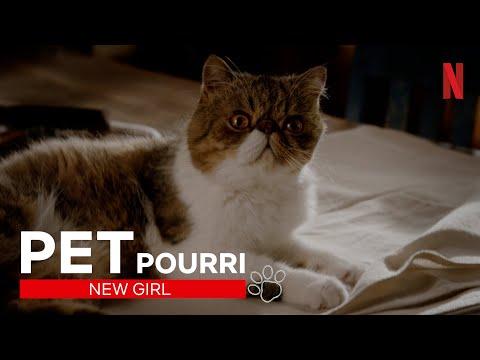 Amerikas Liebling: Best-of Kater Ferguson aus New Girl | Netflix