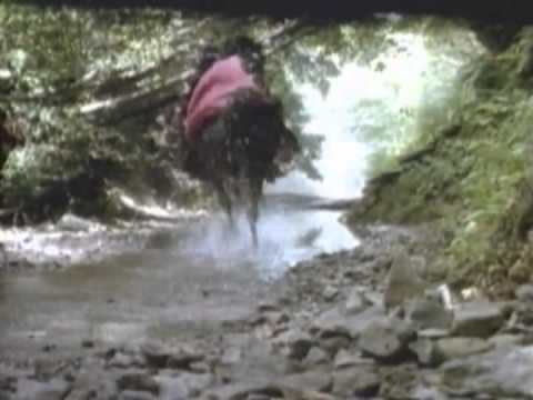 Ewoks: The Battle For Endor Trailer 1985