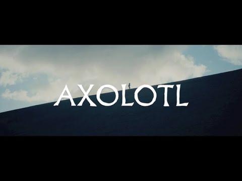 "The Veils - ""Axolotl"" (ft. El-P) (Official Music Video) | Pitchfork"