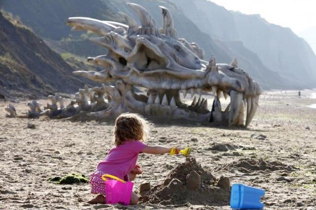 Gestrandeter Drachenschädel