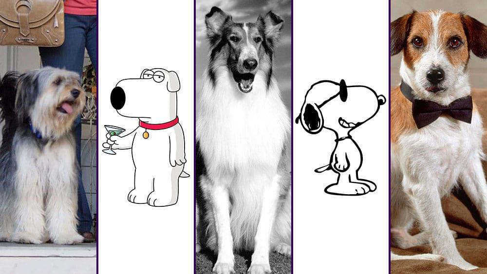 Welcher Serien-Hund ist eure #1?