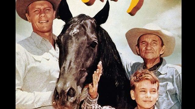 Klassiker der Woche: Fury – Die Abenteuer eines Pferdes