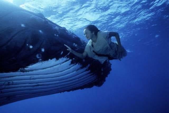 Klassiker der Woche: Ocean Girl