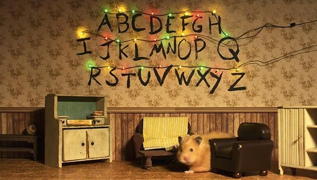 Hamster Things