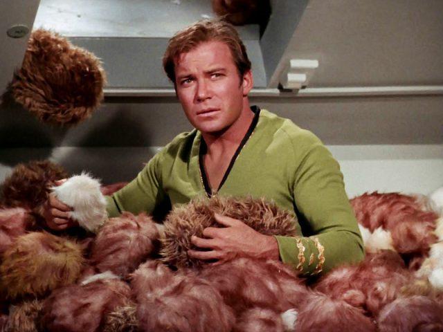 Star-Trek-tribbles-640x480 Hassiker der Woche: Star Trek