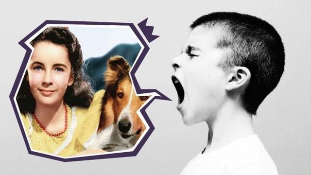 Kommentar-Artikelbild-Vorlage_Tiere_lassie-640x360 Gebt den Tieren eine Hauptrolle!