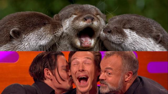 The Graham Norton Show: Cumberbatch imitiert Otter