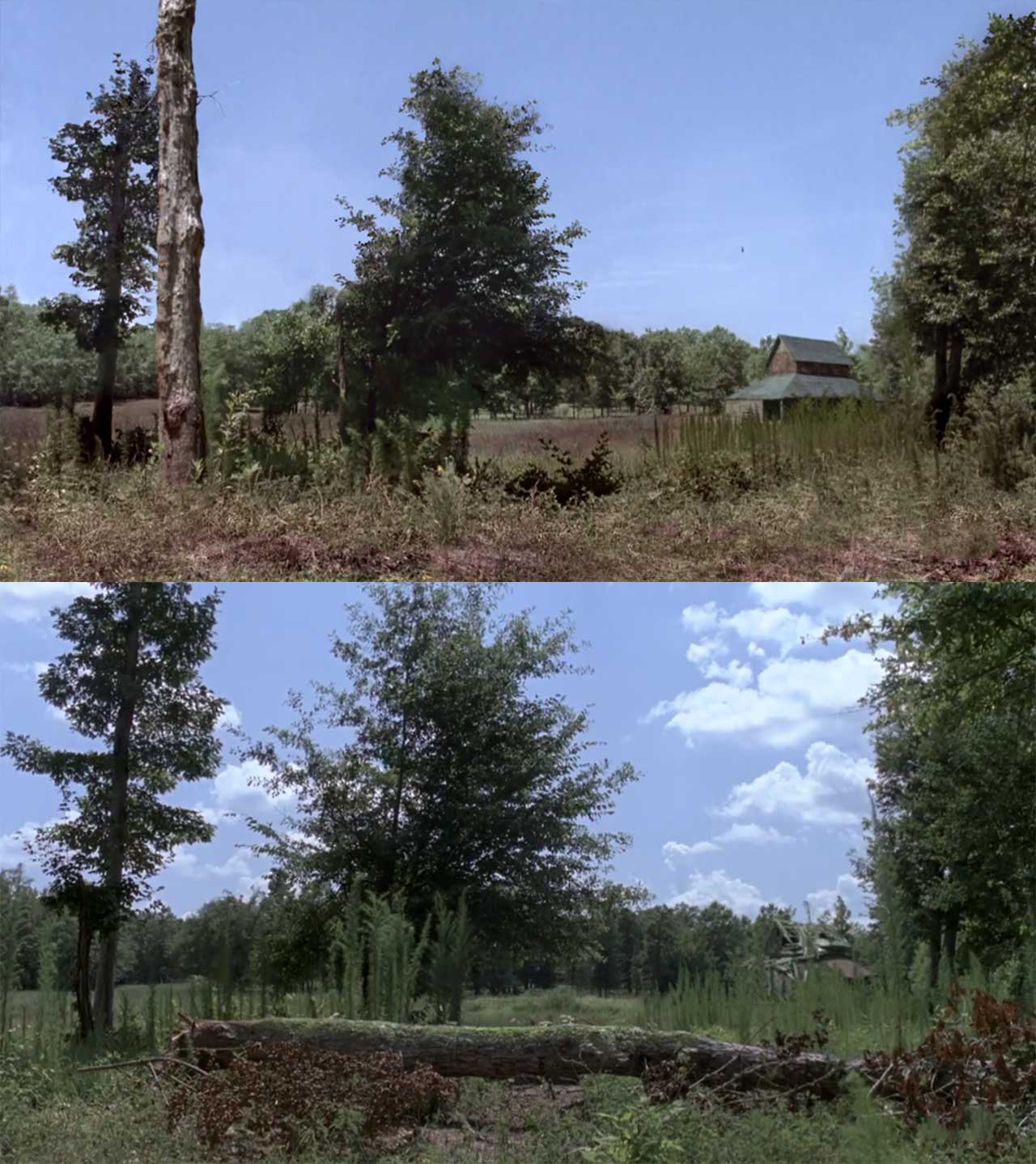 The-Walking-Dead-S09E05_Review_07 Review: The Walking Dead S09E05 - What Comes After