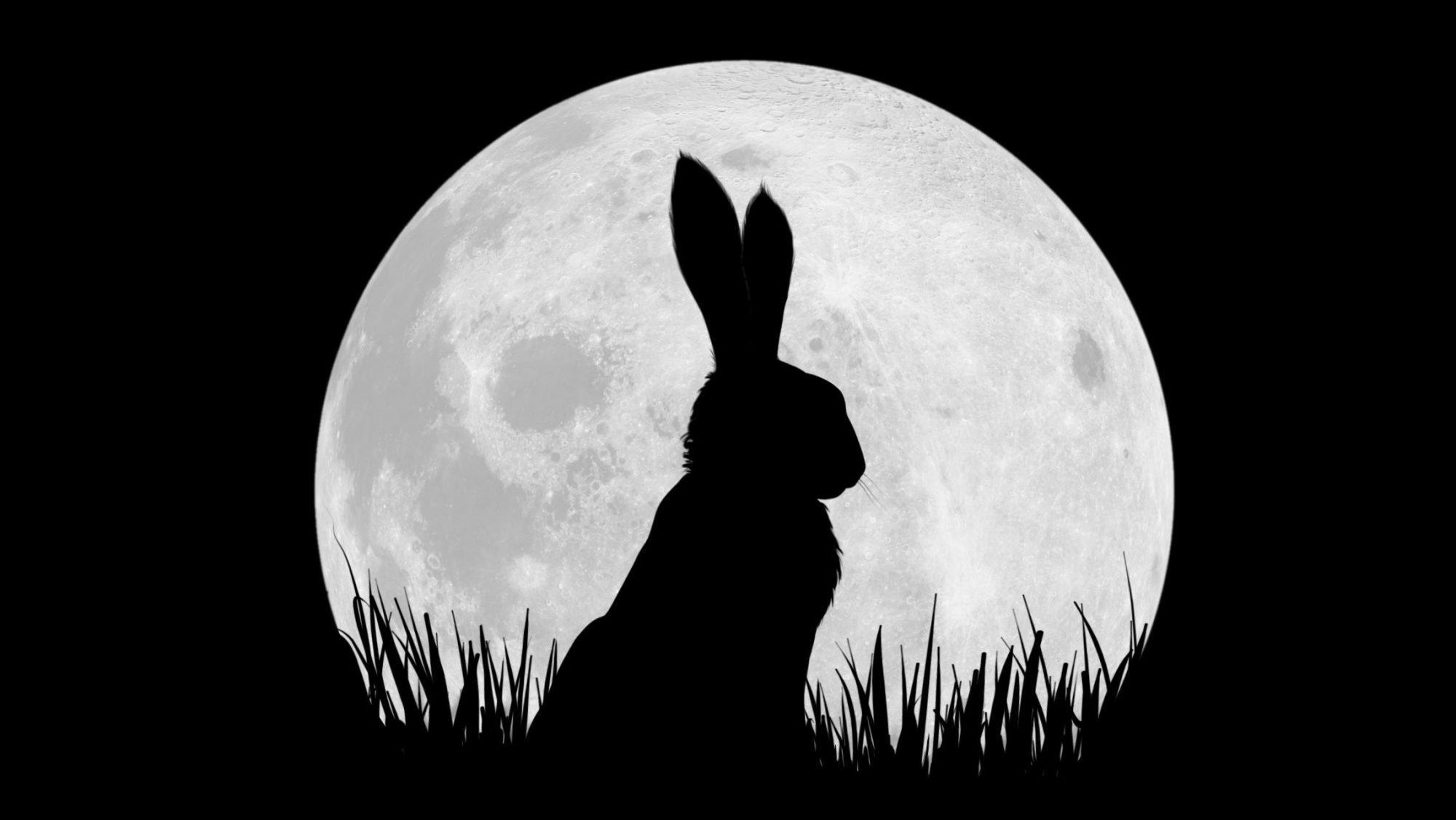 Die besten Easter Eggs bei Netflix-Produktionen