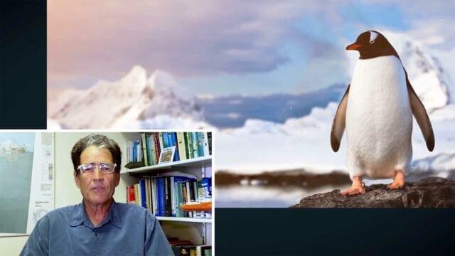 """Echter Antarktis-Forscher reagiert auf """"Atypical"""""""